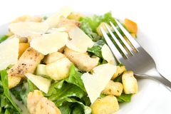 Caesar Salad Isolated on White Royalty Free Stock Image