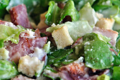 Caesar salad lettuce and bacon Royalty Free Stock Image