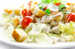 Caesar salad. With lettuce on a white tablecloth Stock Photography