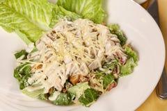 Caesar Salad Stock Images