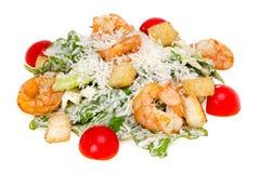 Caesar Salad mit Garnele Lizenzfreies Stockfoto