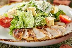 Caesar Salad mit geschnittener Hühnerleiste lizenzfreie stockfotos