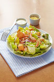 Caesar salad on plate with dressing Stock Photography