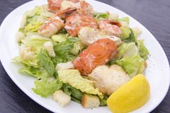 Caesar Salad with Prawns Salmon and White Fish Royalty Free Stock Photography