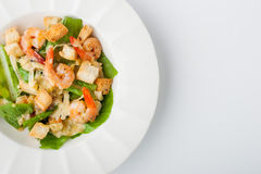 Caesar salad with prawns on the white plate top view Stock Images