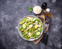 Caesar salad with eggs, chicken and parmesan Royalty Free Stock Photos