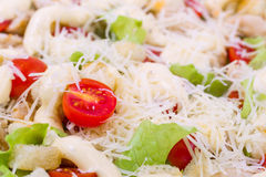 Caesar Salad on a serving plate Royalty Free Stock Images
