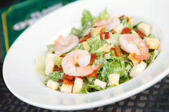 Caesar salad with shrimp and fresh vegetables.  Stock Images