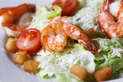 Caesar salad with shrimp on a plate. On a white background Royalty Free Stock Images