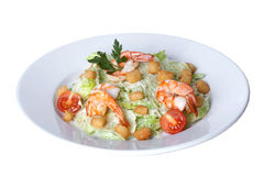 Caesar salad with shrimp on a plate Royalty Free Stock Image
