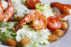 Caesar salad with shrimp on a plate Royalty Free Stock Photo