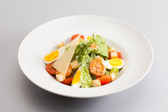 Caesar salad with shrimp tomato cherry, eggs. white plate gray background Royalty Free Stock Image
