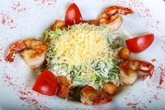 Caesar salad with tiger shrimps Stock Image