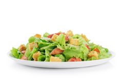 Caesar salad on white background. Healthy food royalty free stock photo