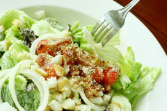 Caesar salad in white bowl Royalty Free Stock Photos