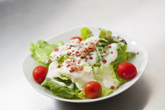 Caesar salad with white dressing. Served on a white bowl Stock Image
