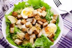 Caesar-Salat Lizenzfreies Stockfoto