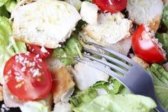 Caesar-Salat Lizenzfreies Stockbild