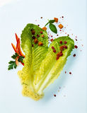 Caesar salat Royalty Free Stock Images