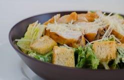 Caesar Salat Foto de Stock