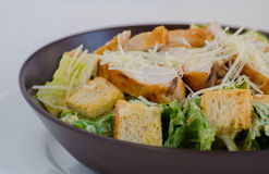 Caesar Salat Arkivfoto