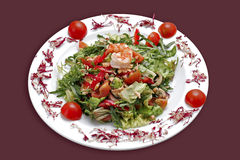 Caesar salat Royalty Free Stock Photos