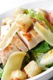 Caesar-Salat Lizenzfreie Stockbilder