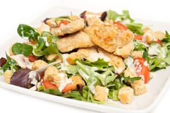 Caesar-Salat auf einer Platte Stockfoto
