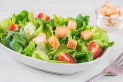 Caesar-Salat in der Schüssel Lizenzfreies Stockfoto