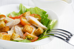 Caesar-Salat mit Soßennahaufnahme lizenzfreie stockbilder