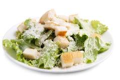Caesar-Salat ohne Fleisch Stockfotografie
