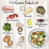 Caesar sallad stock illustrationer