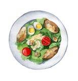 Caesar sallad med det fega bröstet, krutonger, ägg och tomater på royaltyfri illustrationer
