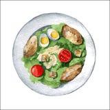 Caesar sallad med det fega bröstet, krutonger, ägg och tomater vektor stock illustrationer