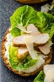 Caesar sallad på paninirostat bröd Arkivbild
