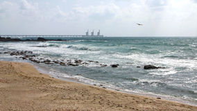 Caesarea driva som fiskar medelhavs- netto havstonfisk Fotografering för Bildbyråer