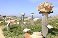 Caesarea Maritima Chapters. Stand of Chapters in Caesarea Maritima near to Roman Theater that can see in the Background stock photo