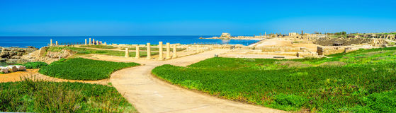 Caesarea on the palm stock photography
