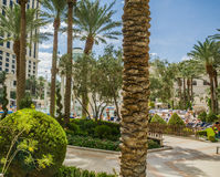 Caesars Palace swimming pool area Royalty Free Stock Photos