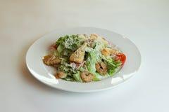 Caesarsalade met garnalen Royalty-vrije Stock Fotografie