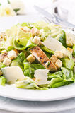 Caeser Salat Lizenzfreie Stockfotos