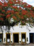 Café de la calle en Paraty, Rio de Janeiro - el Brasil Café de rue àParaty, Río de Janeiro-Brésil Fotografía de archivo