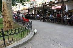 Cafés längs en trottoar i Istanbul Arkivbild