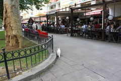 Cafés le long d'un trottoir à Istanbul Photographie stock