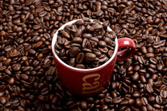 Café foto de stock royalty free