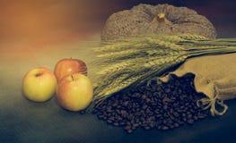 Café agricole frais de pomme de production Image stock