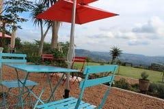 Café al aire libre en el valle de 1000 colinas, KZN, Suráfrica Foto de archivo libre de regalías