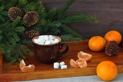 Café avec la guimauve, les mandarines et des branches d'arbre de Noël Carte de Noël et d'an neuf photos libres de droits