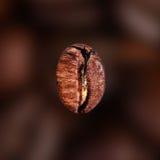 Café Bean Macro de chute sur le fond foncé de tache floue de couleur de café photo stock