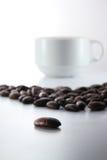 Café Bean With White Cup Fotografia de Stock